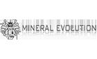 Mineral Evolution